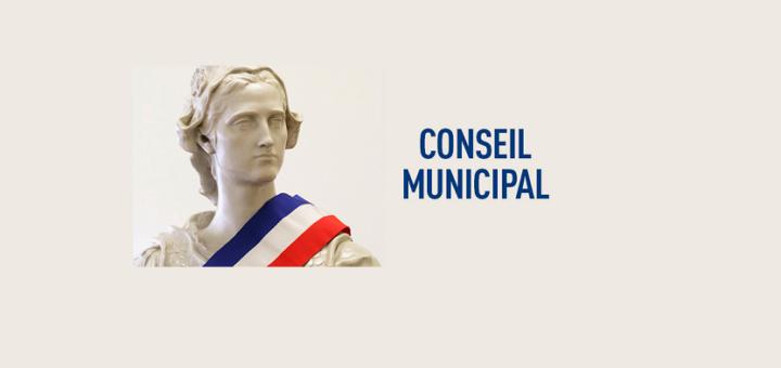 réunion, conseil municipal