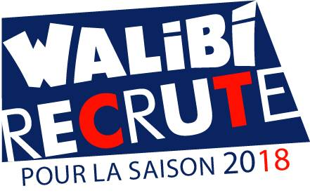 walibi, recrute, offre, emploi